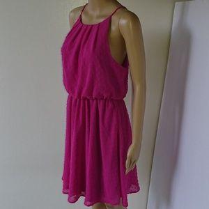 NWT Francesca's Blue Rain Pink Dress Size M